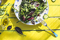 Spring salad of baby spinach, herbs, arugula and lettuce on plate, olive oil - DEGF000721