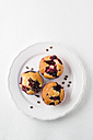 Muffin with chocolate chips, blueberries and raspberries on plate - MYF001423
