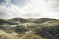 Denmark, Henne Strand, Dune landscape - BMA000175