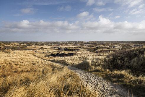 Denmark, Henne Strand, Dune landscape - BMA000178