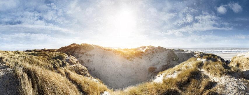 Denmark, Henne Strand, Dune landscape - BMA000214