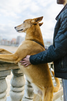 Man and his dog looking at distance - MGOF001604