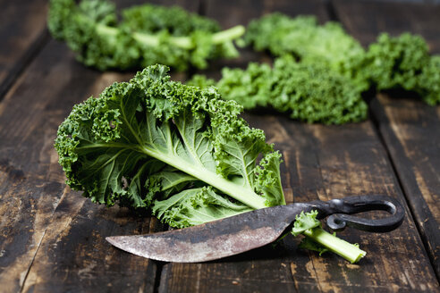 Kale leaves on dark wood - CSF027361