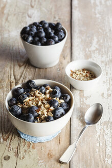 Bowl of porridge with blueberries - EVGF002880