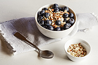 Bowl of porridge with blueberries - EVGF002883