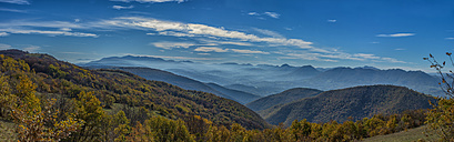 Italy, Marche, Canfaito, Forests in Apennines in Autumn - LOMF000255