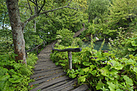 Croatia, Karlovac, Wodden boardwalk in Plitvice Lakes National Park - RUEF001677