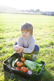 Boy crouching on meadow with basket full of vegetables - VABF000411