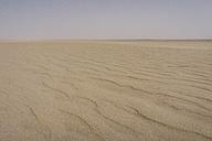 UAE, Rub' al Khali, ripple marks in the desert sand - MAUF000401