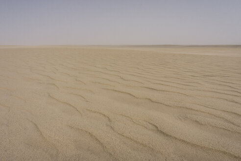 UAE, Rub' al Khali, ripple marks in the desert sand - MAUF000401