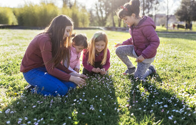 Four girls on a meadow picking daisies - MGOF001713