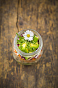 Springtime salad in glass, radicchio, avocado, carrot, and cress, daisy - LVF004731