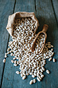 Sack of dried white beans and scoop on wood - KIJF000300