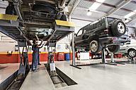 Car mechanics working under a car - JASF000693