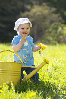 Smiling baby girl on meadow picking dandelions - WWF003946