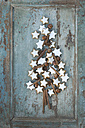Christmas tree shaped of cinnamon stars, cinnamon sticks, star anise and hazelnuts - ASF005885