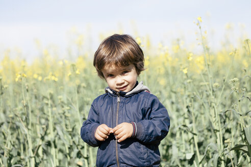 Portrait of little boy standing in front of rape field - XCF000089