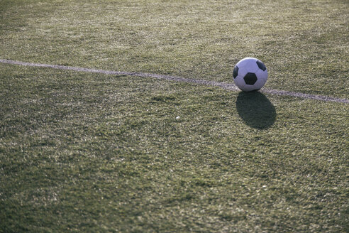 Football on the line on football ground - ABZF000455