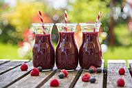 Row of three raspberry blueberry smoothies - SARF002720