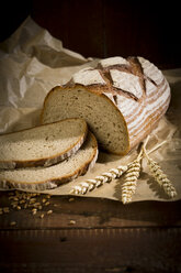 Brown bread on wood, slices, spikes - MAEF011460