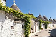 Italy, Apulia, Alberobello, Trulli, dry stone huts with conical roofs - CSTF001063