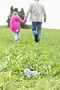 Cuddly toy lying on meadow while man going away with little girl - MAEF011551