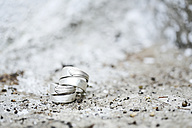 Two wedding rings on stone - MAEF011556