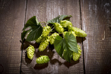 Ripe hops on wood - MAEF011587
