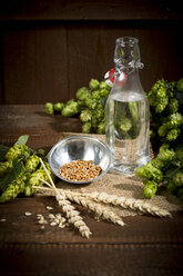 Ingedients for beer brewing, water, barley, hops and malt - MAEF011590
