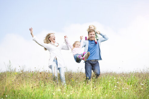Carefree family in meadow - MAEF011619
