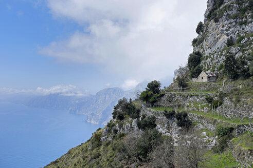 Italy, Campania, Coast of Amalfi, house and terraced field - HLF000967