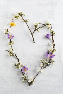 Heart of twigs, wild plum and crocus - MYF001479