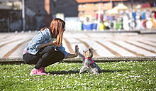 Young woman playing with her Yorkshire Terrier on a meadow - MGOF001837