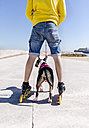 Back view of inline-skater and his bull terrier - MGOF001843