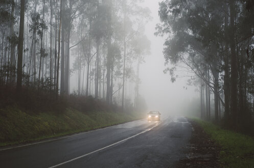 Spain, Galicia, Ferrol, Road in a forest with fog, on the road runs a car with lights - RAEF001164