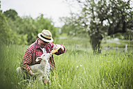 Shepherd feeding lamb with milk bottle - UUF007317