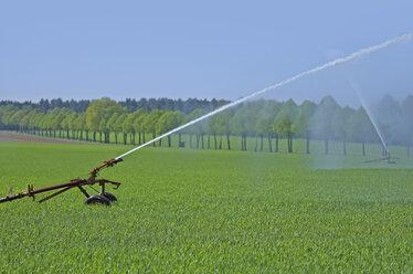 Sprinkler system on field - KLRF000315