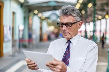 Senior businessman holding digital tablet - DIGF000545