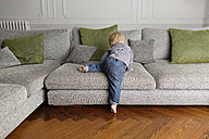 Back view of toddler climbing on the couch - LITF000313