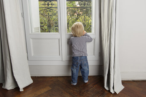 Back view of toddler looking out through window - LITF000328