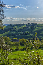 Italy, Tuscany, Val d'Orcia, road with cypresses in spring - LOMF000273