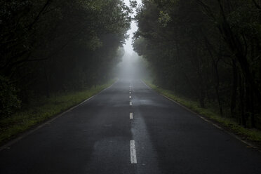 Empty country road in the fog - SIPF000507
