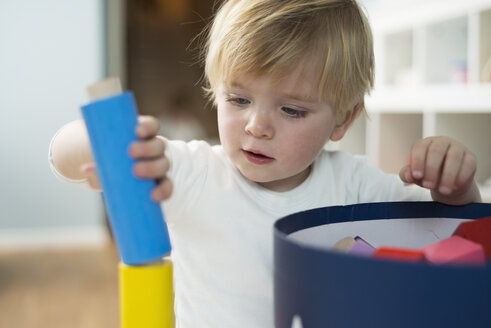 Little boy playing with building blocks - LFOF000235