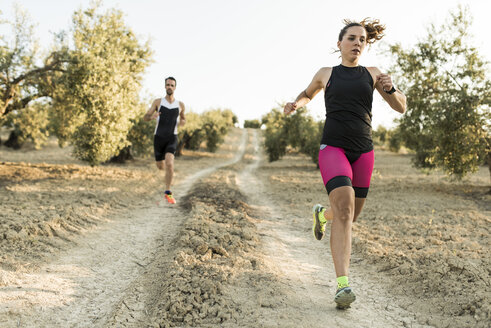 Two athletes running in olive orchard - JASF000741