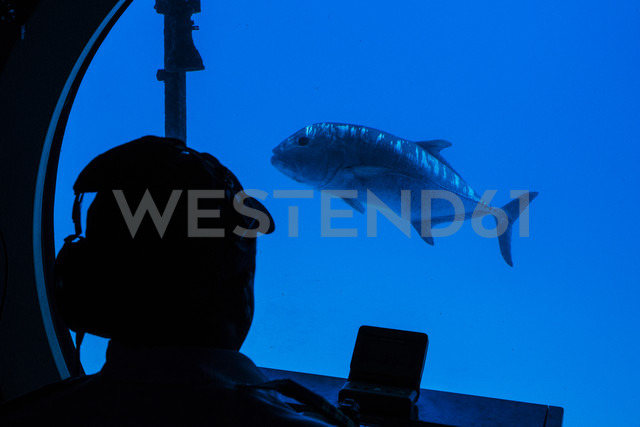 Underwater view in a submarine - NG000329 - Nadine Ginzel/Westend61