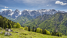 Austria, Tyrol, Alps, Kaisertal, Wilder Kaiser - STSF001023