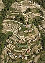 Nepal, Himalaya, Solo Khumbu, Everest region, mountain settlement and terraced fields - ALRF000516