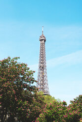 France, Paris, Eiffel Tower among the flowering trees in a sunny day with blue sky - GEMF000912