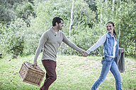 Young couple with picnic basket walking hand in hand in nature - ZEF008673