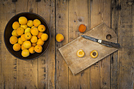 Bowl of organic apricots on wood - LVF004925